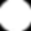 PBW_ICON_Seasonal_Social Media_Circle Wh