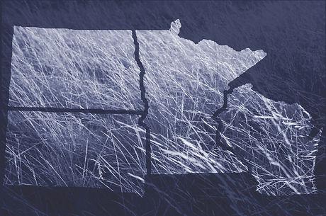 NC States_Blue Grass-dark.jpg