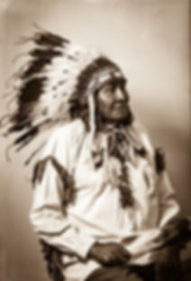 Chief yellow Calf