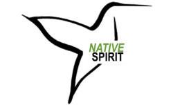 cropped-Native-Spirit-logo_2.jpg