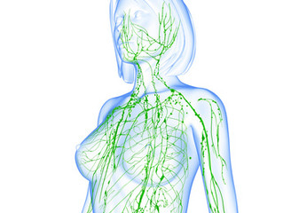 Tips to help your body cleanse - Lymphatic System