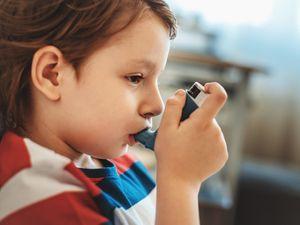 Springfield Named #1 Asthma Capital