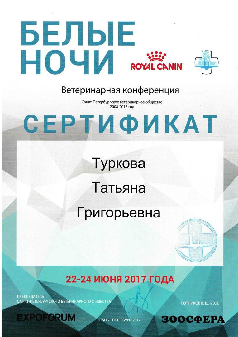 Сертификат БЕЛЫЕ НОЧИ
