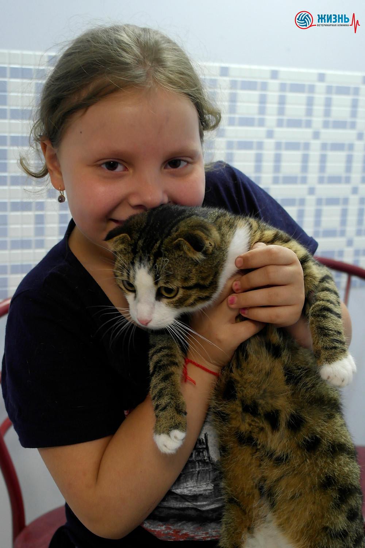 Ветклиника в Калуге, девочка с котом