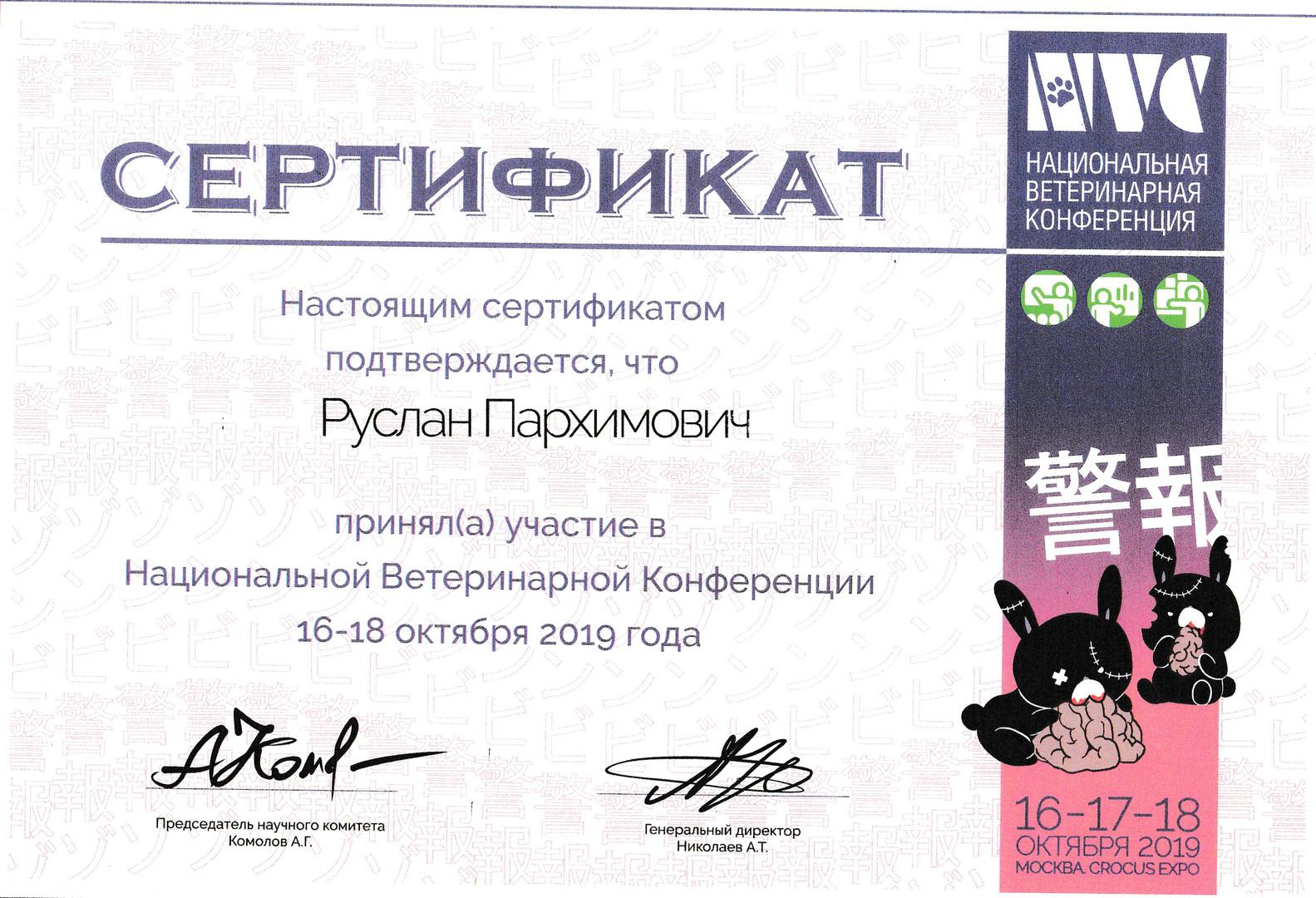 NVC 2019 Пархимович Руслан Русланович.jp