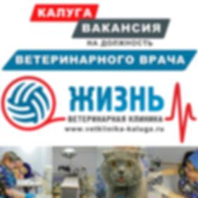 Вакансия на должность ветеринарного врач