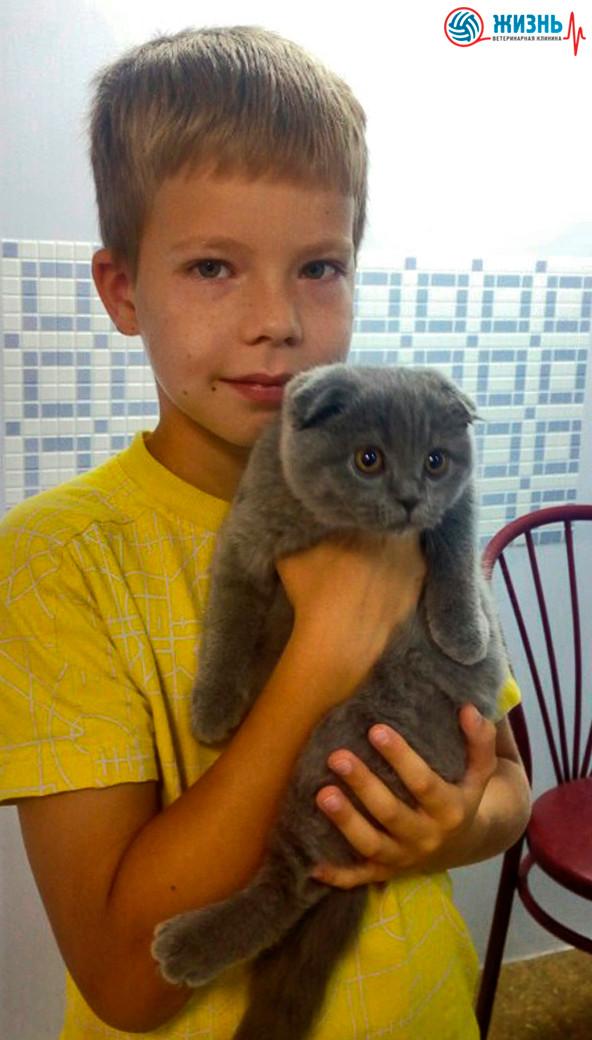 """Ветеринарная клиника """"Жизнь"""" в Калуге, мальчик с котенком"""