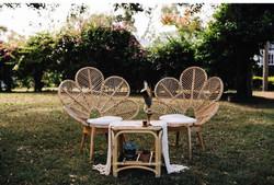 Daisy Chairs