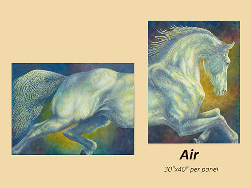 """""""Air"""" signed and numbered limited edition print"""