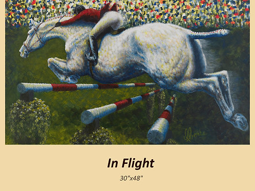 """In Flight"" signed and numbered limited edition print"