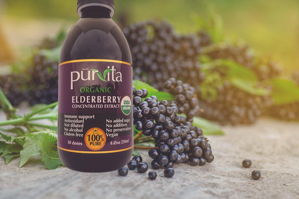 Purvita USDA Organic Website cover.jpg