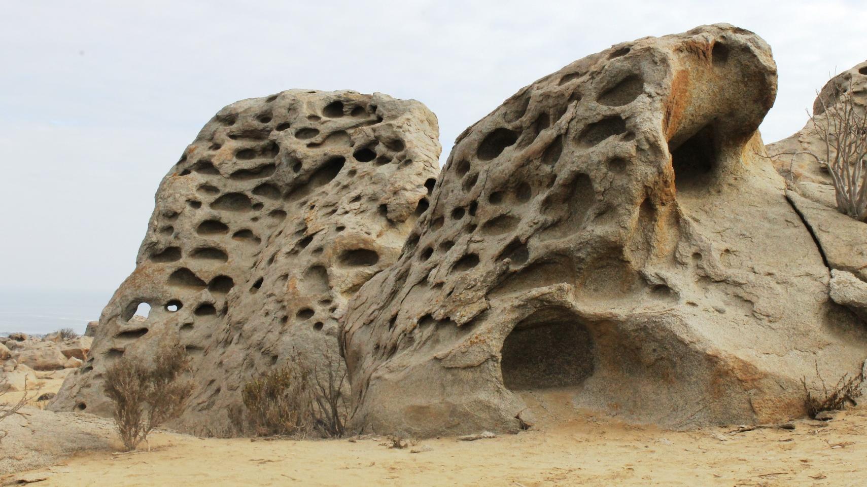 Zoológico de Piedras