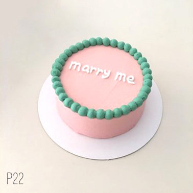 Plain Simple Style - Pink and Green Cake ( P22 )