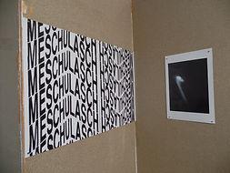 IReiser-WHATANDIDIDNTKNOW-Installation-1