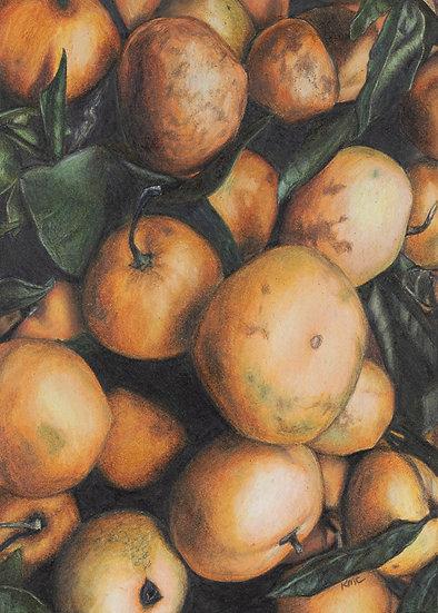 """""""Miss Clementine"""" Original Art"""