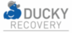 Recovery Logo .png