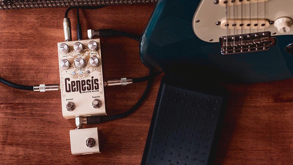 Genesis 8.jpg