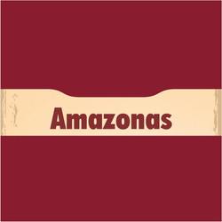 Ver representantes no Amazonas