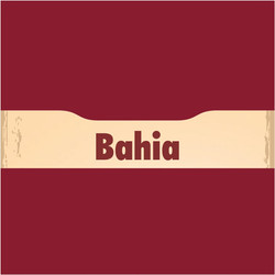 Ver representantes na Bahia