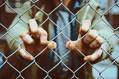 caged_edited.jpg