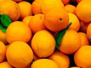 ★熊本より季節をお届け!3月1日は『デコポンの日』甘くて美味しい新鮮な果実をアシストラインが宅配
