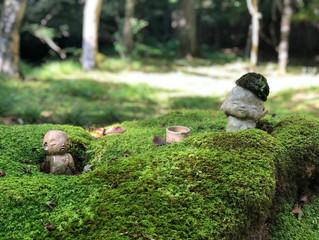★めっちゃストレス解消(@^^)『GoToトラベル』で京都の『大原三千院』行ってみたを