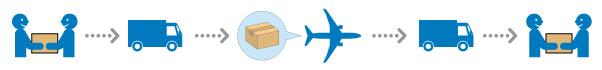 航空便 飛行機で輸送