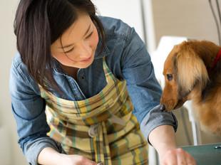★大好評♪大切な家族『ペット移動サービス』は緊急な場合やご旅行でも喜ばれています