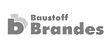 brandes_edited_edited.png