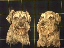 Ted & Alfie