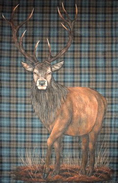 Red Deer Full scale
