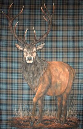 Red Deer Full scale