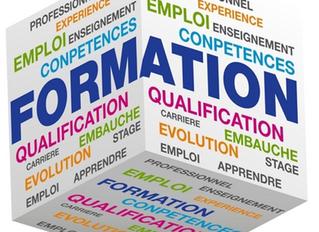 Qu'est-ce qu'une Préparation Opérationnelle à l'Emploi Individuelle ou POEI?
