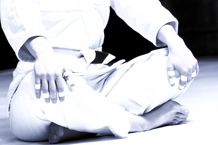 Jujitsu Posture_edited_edited.jpg