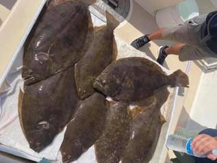 Aug 23 Fishing Report