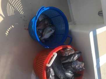 August 20 Fishing Report