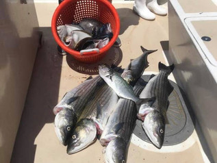 June 28 Fishing Report