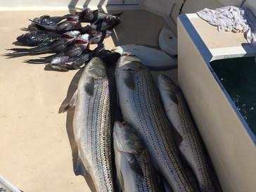 July 16 Fishing Report