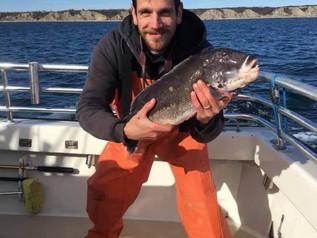 Nov 9 Fishing Report