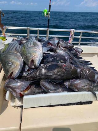 Aug 25 Fishing Report