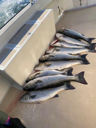 Oct 9 AM Fishing Report
