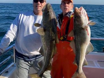 Nov 21 Fishing Report
