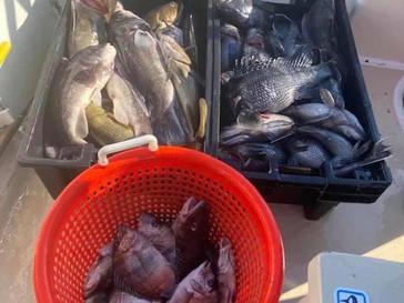 Nov 28 Fishing Report