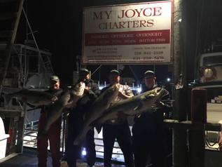 Sept 7 Fishing Report