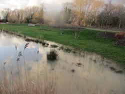 Barton Park Swale
