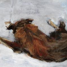 Bat 2010