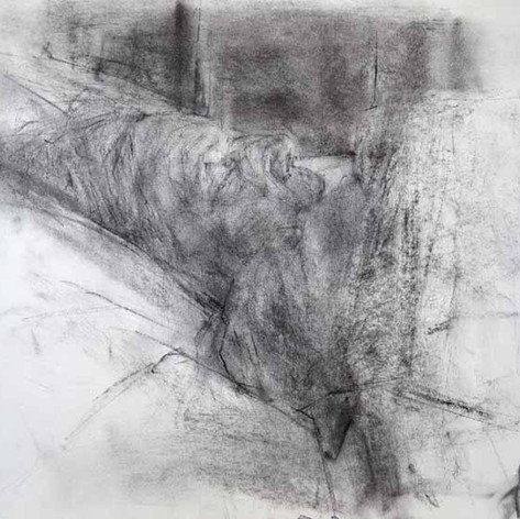Fatigue 2011