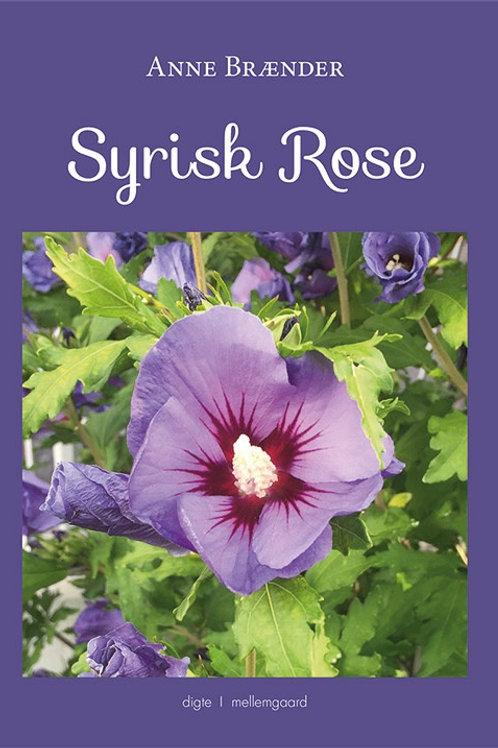 Anne Brænder, Syrisk rose