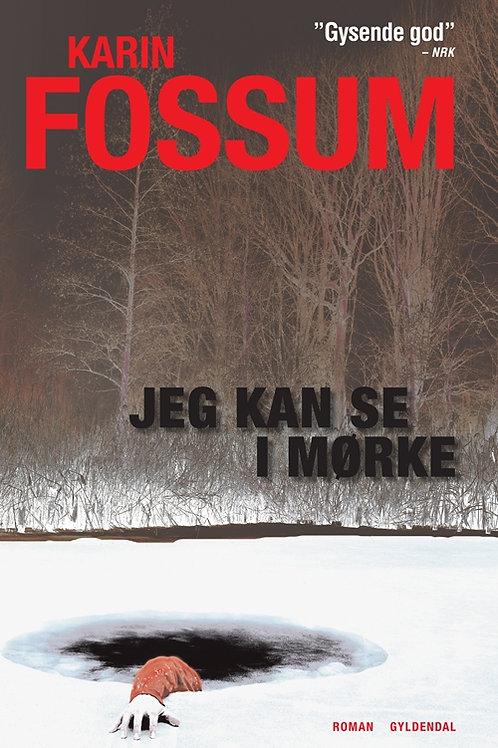 Karin Fossum, Jeg kan se i mørke