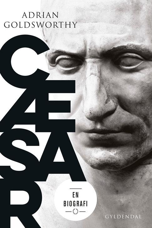 Adrian Goldsworthy, Cæsar
